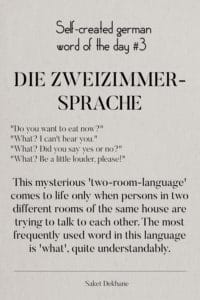 "Dictionary 3 - Die Zweizimmersprache. ""Do you want to eat now?"" ""What? I can't hear you."" ""What? Did you say yes or no?"" ""What? Be a little louder, please!"""